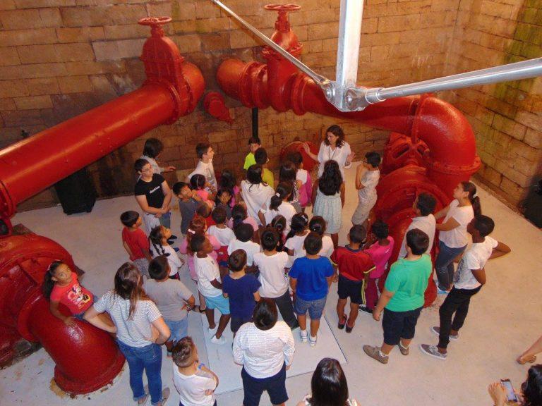 Lee más sobre el artículo Visitas del colegio San Martín y del campamento Dibertipark